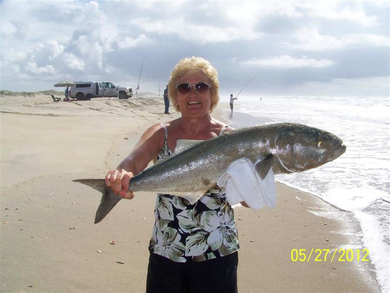 Big bluefish page 3 for Cape hatteras fishing report