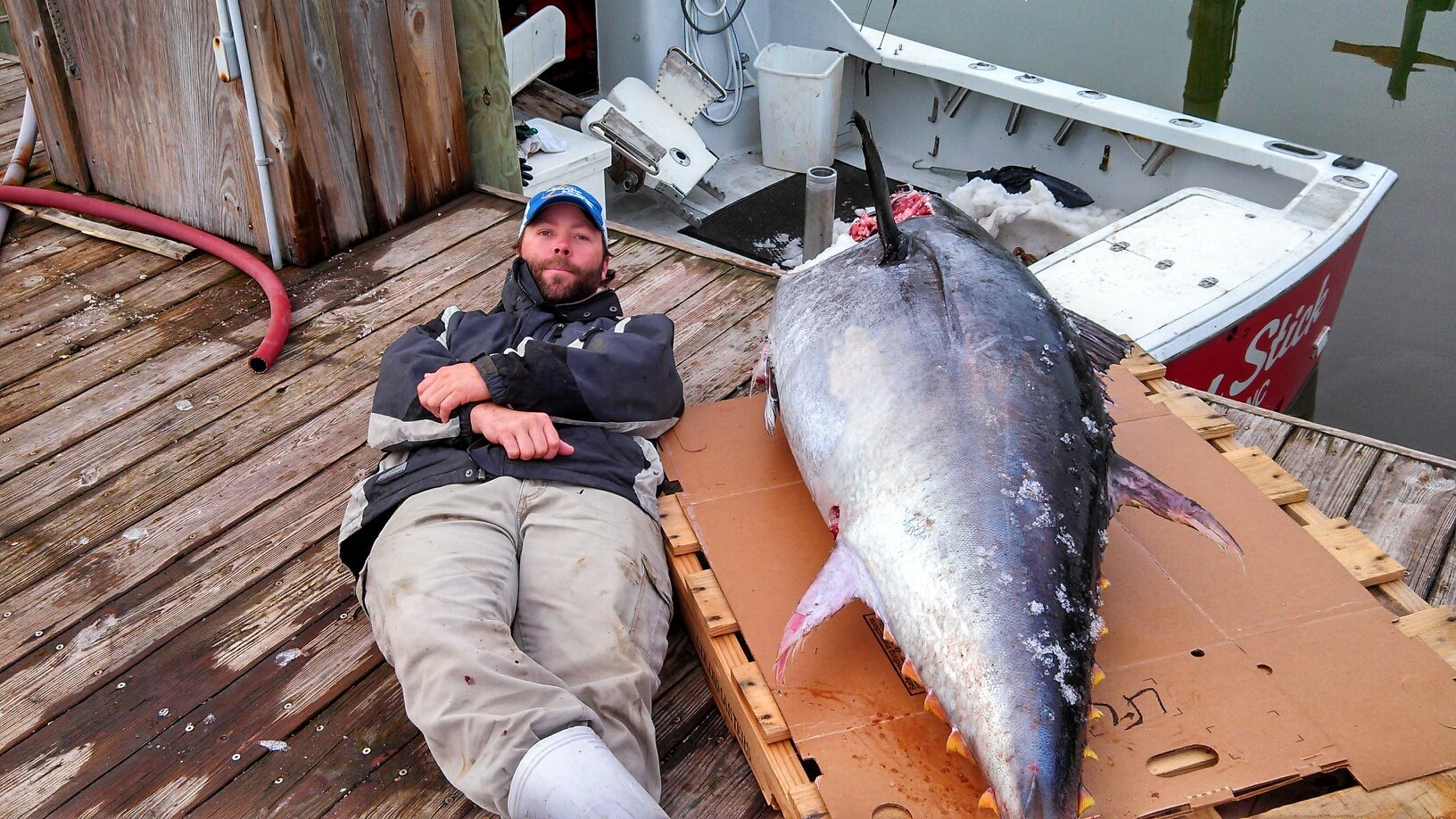 drum stick bluefin tuna