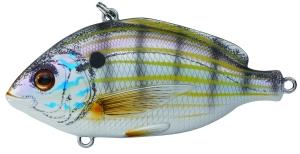 live target pinfish