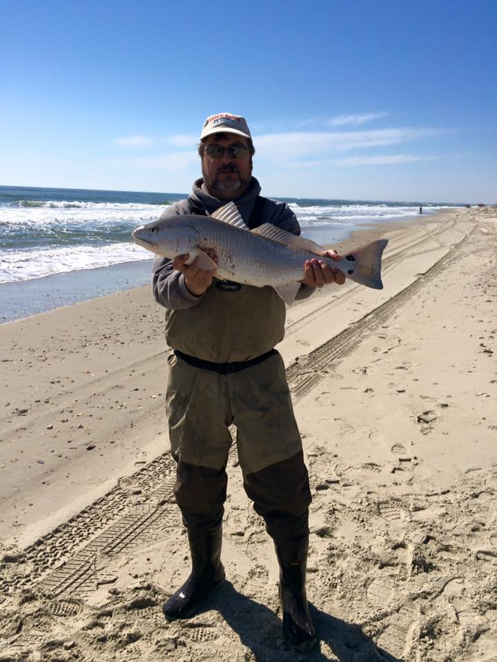 Hatteras island fishing reports for Nc surf fishing report