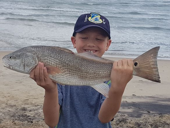 Hatteras island fishing reports for Pamlico sound fishing report